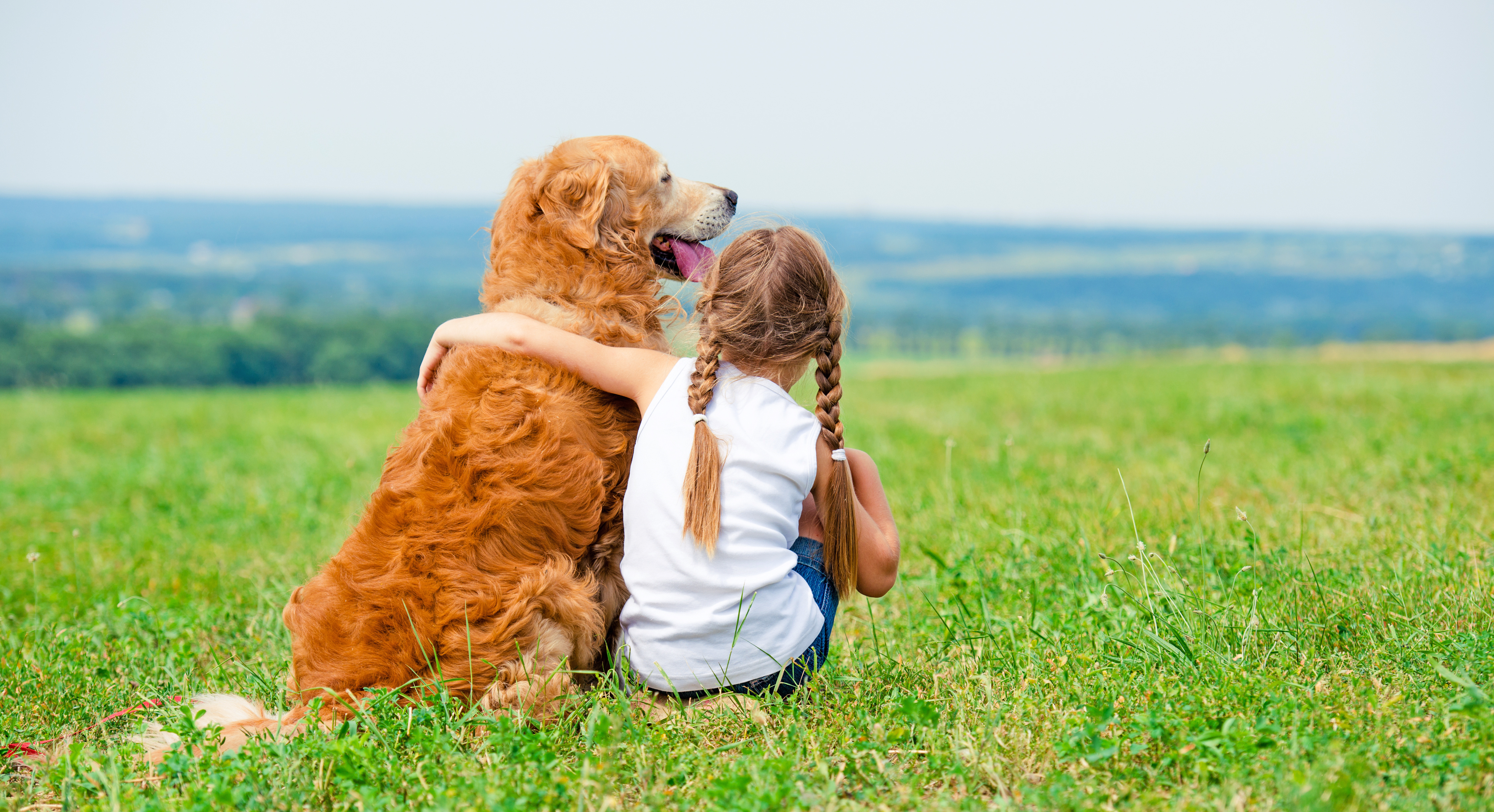 How to Get a Pet (For Kids) images